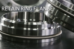 retain-ring-flange-4